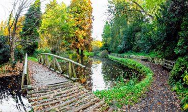 S-a redeschis Parcul Dendrologic Simeria. Până în 15 iunie, accesul este gratuit
