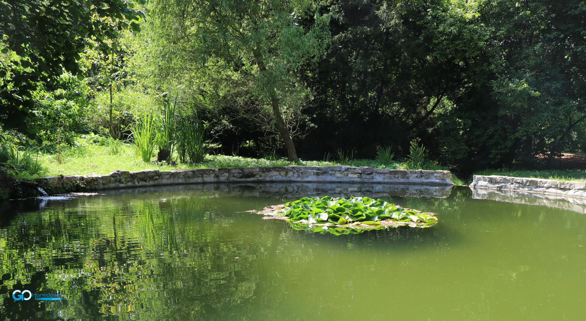 Parcul Dendrologic de la Simeria